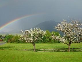 Regenbogen über Schönau
